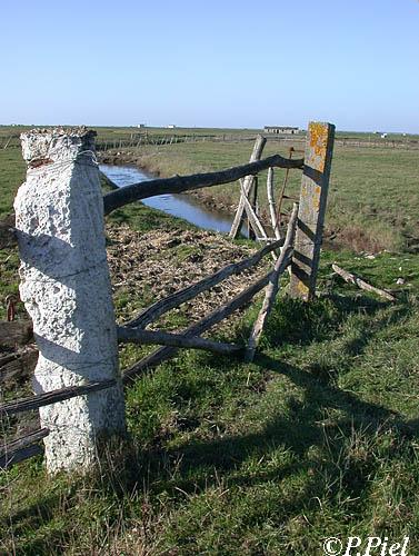 Barrière dont l'un des montants en pierre a été remplacé par un pilier de ciment sur lequel s'accroche du lichen, Marais de Souhe, février 2005