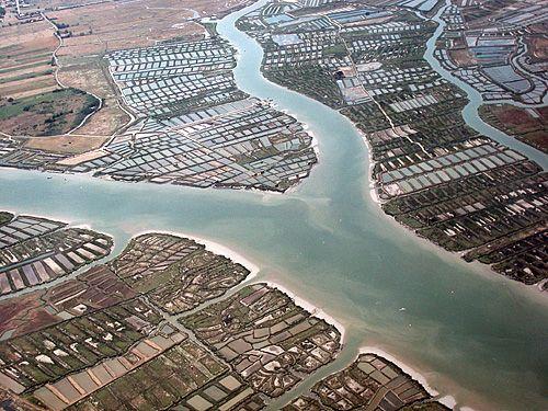 Photographie aérienne de la Seudre et du chenal du  Liman (rive gauche) avec le damier des claires (Association Seudre et mer, Mornac)