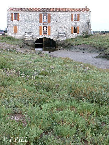 Le Moulin des Loges est une bâtisse sobre mais imposante dont la façade occidentale est percée par une belle voûte à arcs segmentaires, épaulée par deux contreforts. C'est par là que l'eau s'engouffrait sous la roue.